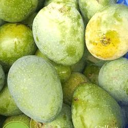 পাইকারি সুরমা ফজলি আম