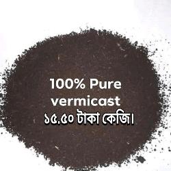 vermicompost price in Bangladesh । vermicompost fertilizer