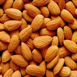 Almond-কাঠবাদাম